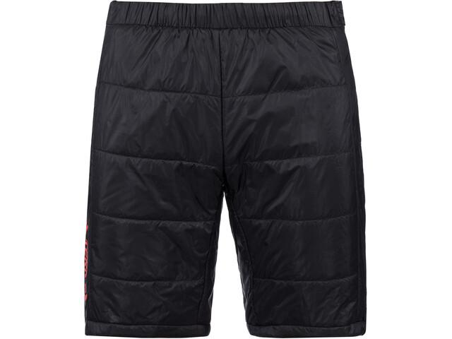 adidas TERREX Sky Ins Shorts Herrer, sort